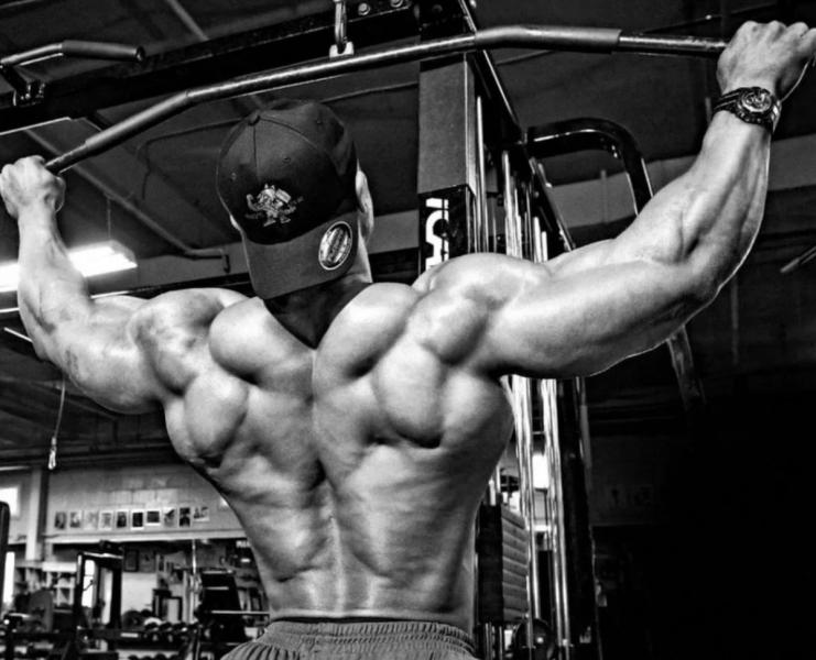 5 лучших упражнений для спины