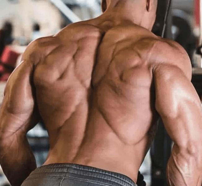7 крутых упражнений для спины и бицепсов