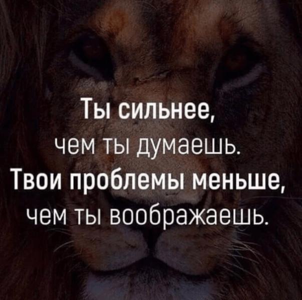 Мотивация в ленту. Подборка лучших цитат