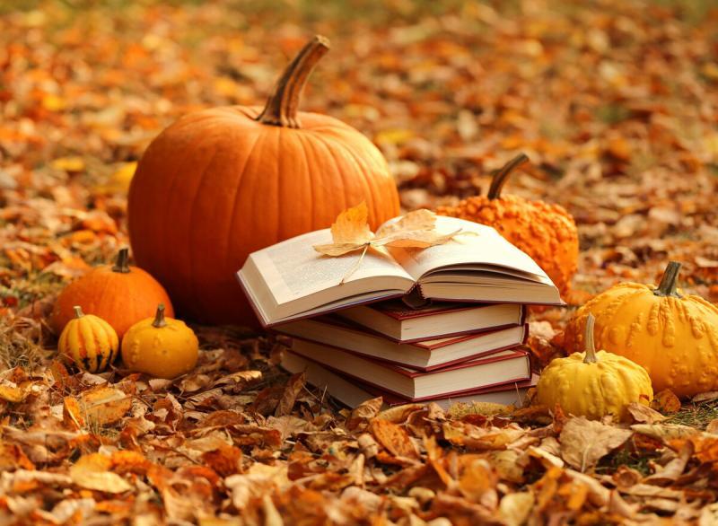 15 книг, которыми будут зачитываться этой осенью (художественная литература)