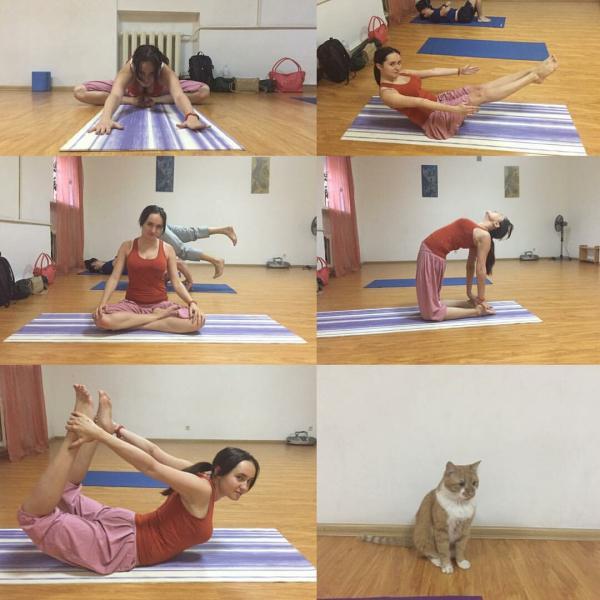6 видов йоги, которые я пробовала