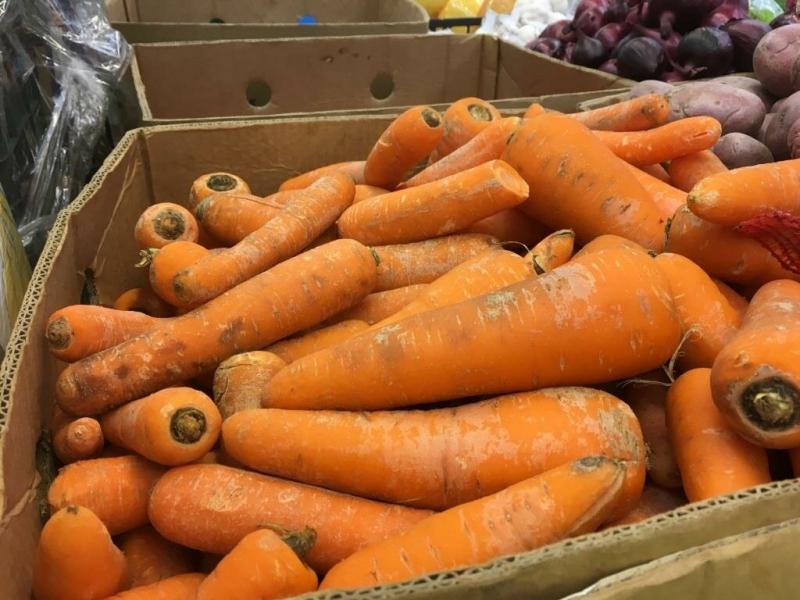 Как хранить морковь: мыть или не мыть? (Вот в чем вопрос)