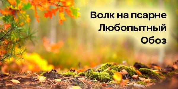 Тест: Кто же автор? Узнаете 7 русских писателей по названиям 3-х произведений?