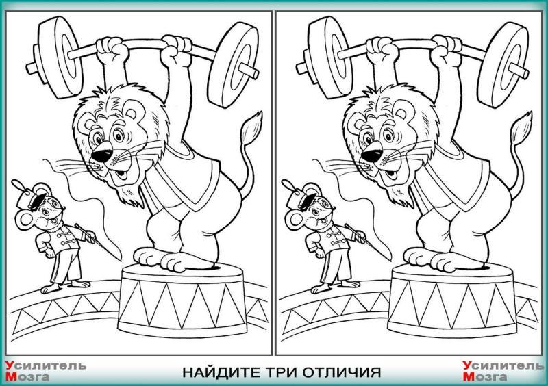 Три отличия на картинках. Найдёте их? Тест на внимательность