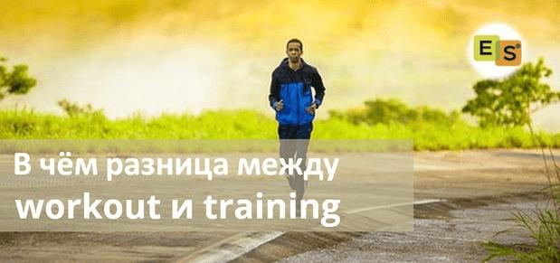В чём разница между workout и training