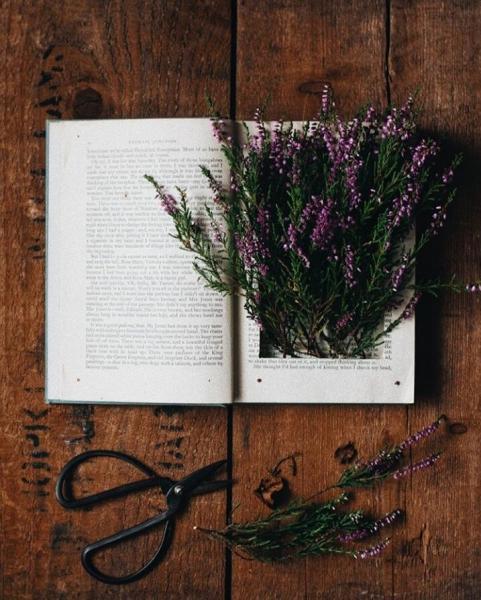 Три приёма: как писать истории из жизни и делать из жизни — истории