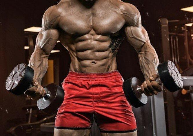 Можно ли развить мышцы, занимаясь с лёгкими весами? Научный анализ