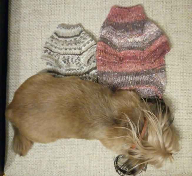 Свитерок для собаки с регланом и ростком
