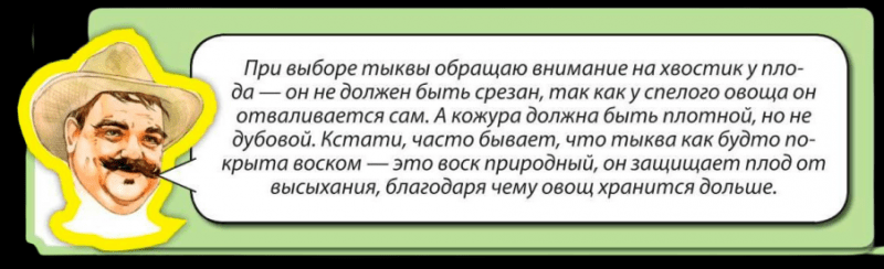 Чизкейк «Король осени»🍎