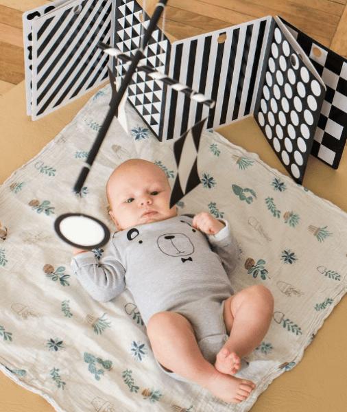 10 базовых игрушек Монтессори для младенцев!