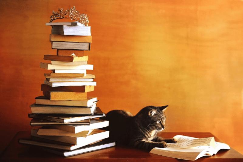 10 новых крутых книг февраля 2021 года. Рекомендую к прочтению
