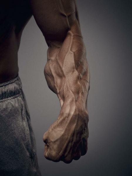 Мышцы, которые вы не качаете. Я тоже