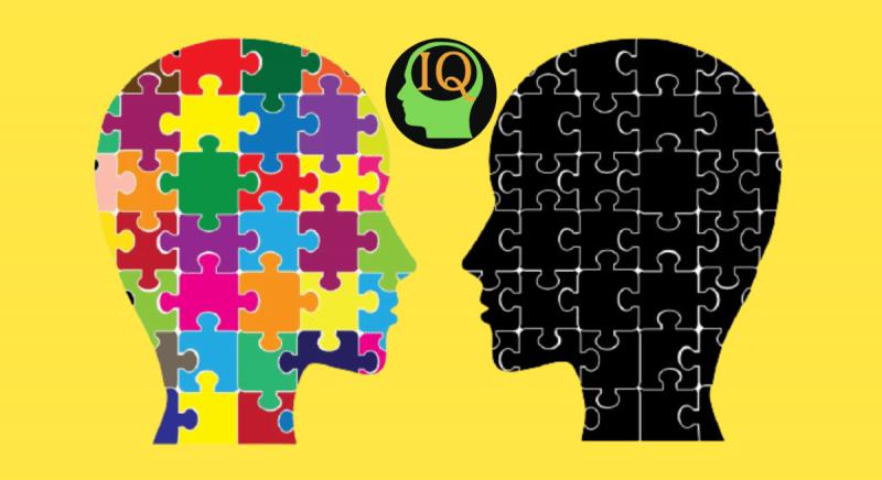 🧩IQ перезагрузка мозга – проверь свой уровень интеллекта, реши 10 логических головоломок👌#63