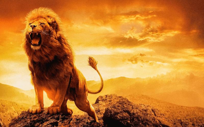 Гороскоп для Льва на апрель 2021: перемены, сложные решения, испытания силы