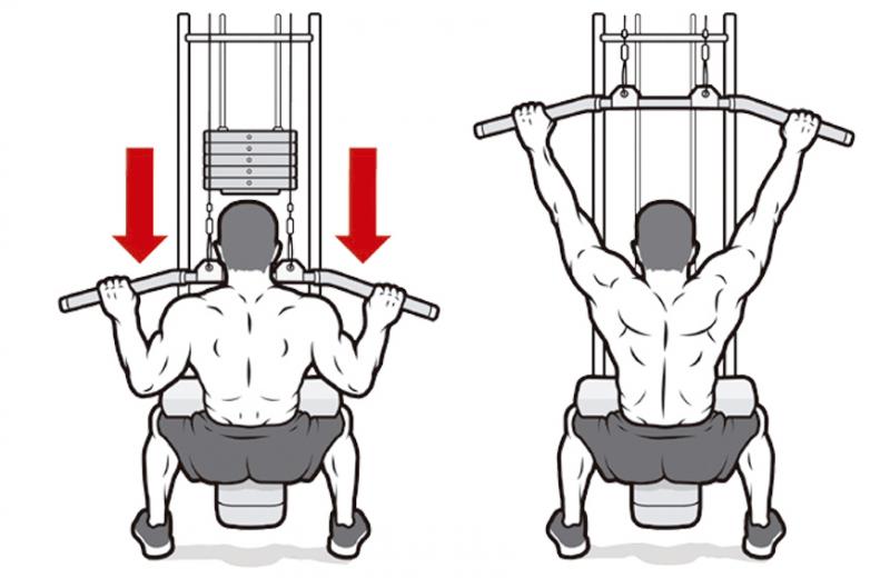 """Как накачать спину? Путаница в """"ширине"""" и """"толщине"""" спины"""