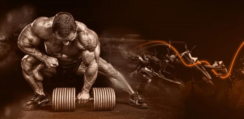 Какие мышечные группы лучше тренировать в один день | Заметки тренера