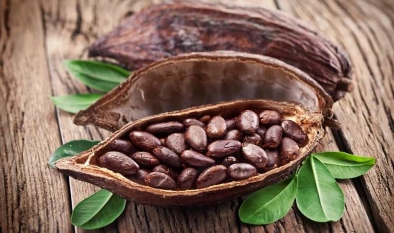 Неизвестные и интересные факты о шоколаде