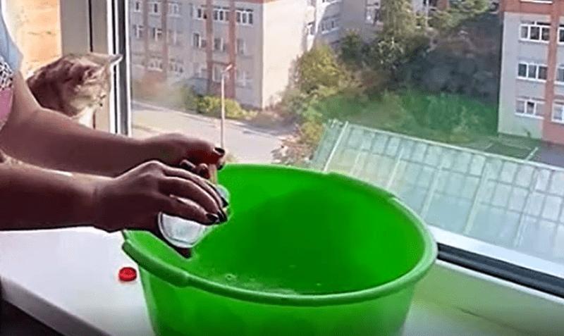 Каждую весну мою окна методом без нашатыря. Ни грязи, ни пыли, а стекла не запотевают целый год. Делюсь методом тёти