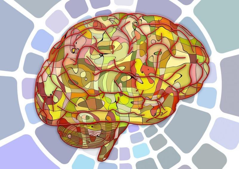 Тест на выявление слабоумия | Логические задачки