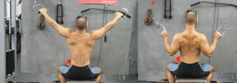 7 отличных упражнений на заднюю дельтовидную