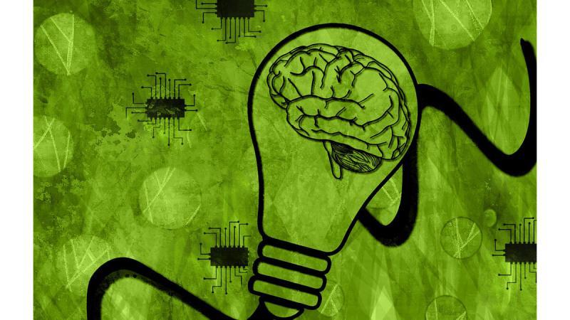 Эффективный тест на выявление умственных дефектов   Логические задачи