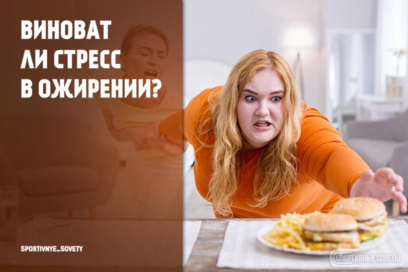 Виноват ли стресс в ожирении?